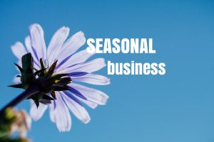 Seasonal Business: How to Achieve Your Goals