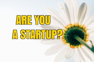Is Your Business A Startup?